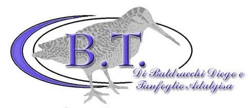 B.T. di Baldracchi Diego e C. Snc logo