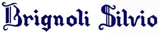 Armeria Brignoli Silvio & C. snc logo